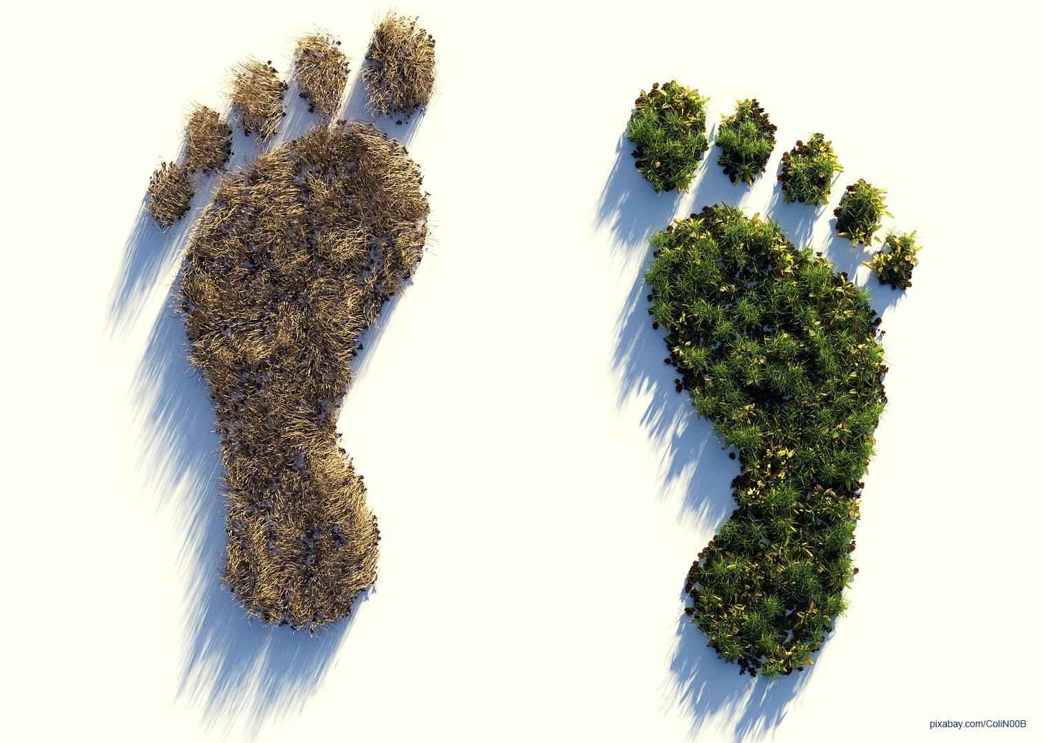 Kennst du deinen CO2-Fußabdruck?