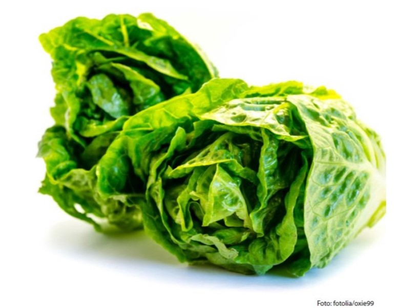 Im Mittelalter wurde sogar Salat gehängt