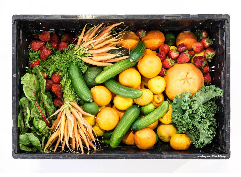 Obst und Gemüse retten